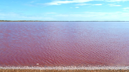 Port Gregory - Pink Lake